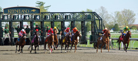 Gunston Hall  (Race 6)